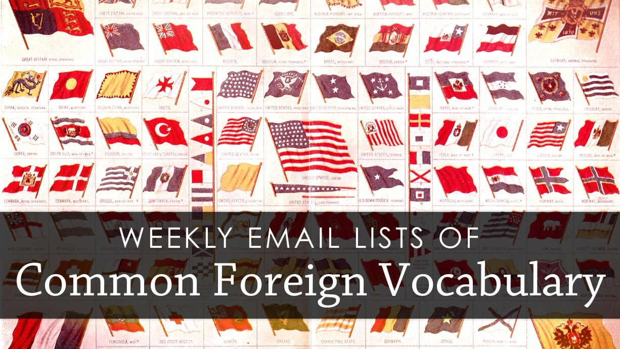 Weekly lists of common foreign vocab emailed to you!